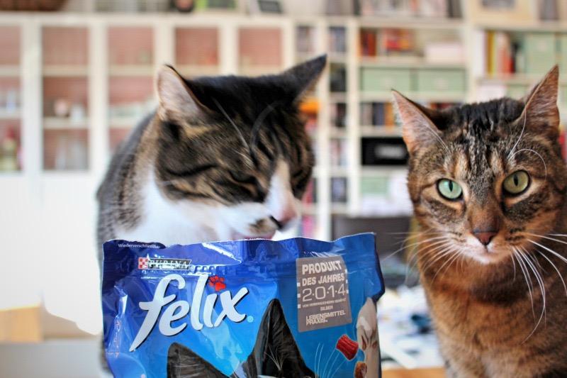 beide 2 - FELIX Crunchy & Soft im Test
