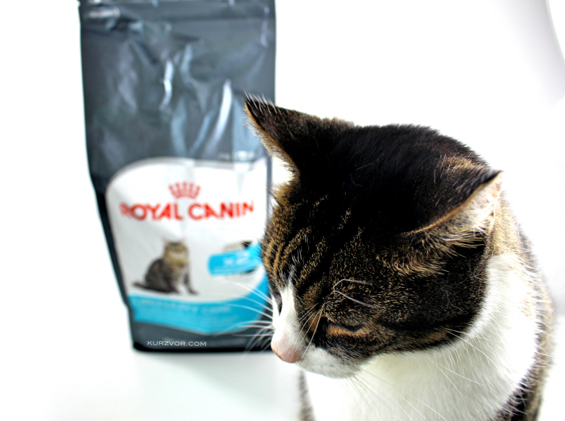 beauty - Royal Canin Urinary Care