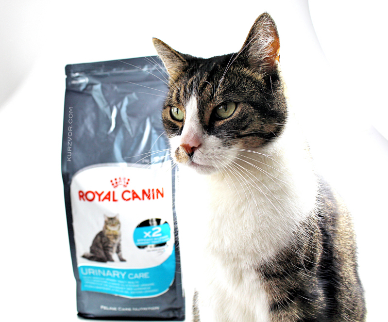 guenni - Royal Canin Urinary Care