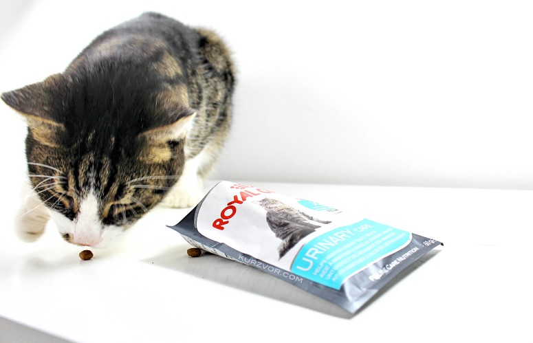 klauen4 e1437222576685 - Royal Canin Urinary Care