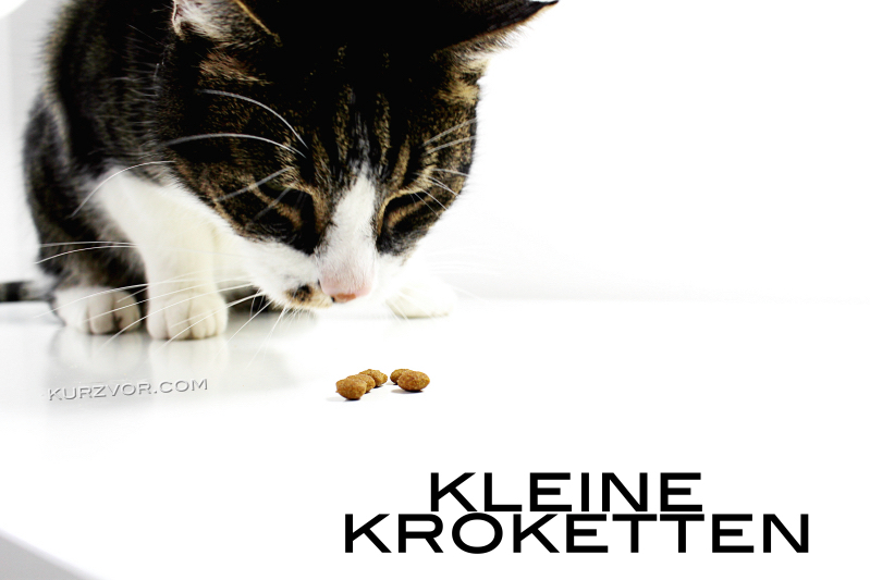 kleine kro - Royal Canin Urinary Care