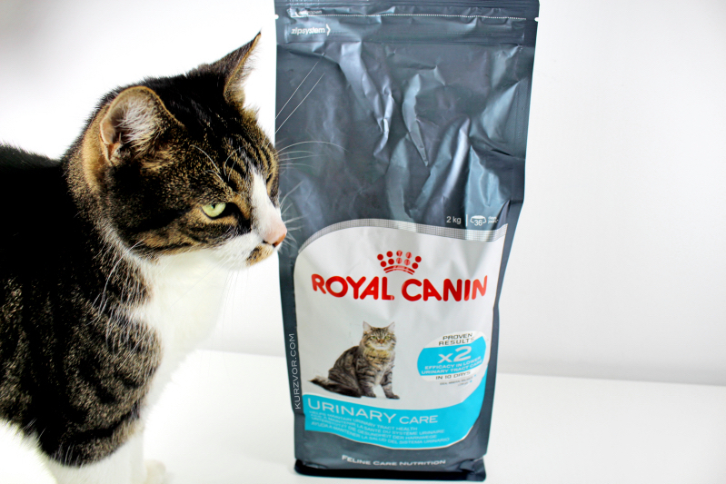 sack katze - Royal Canin Urinary Care