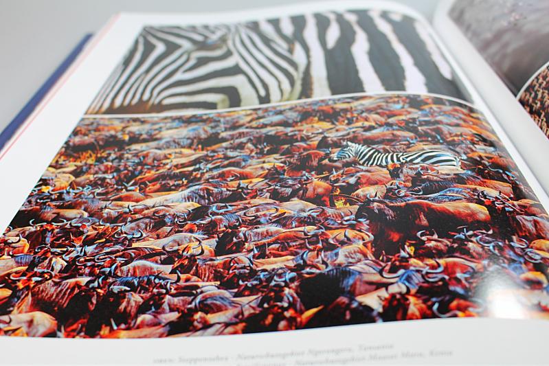 bunt - Eden - Die Fotografie von Art Wolfe