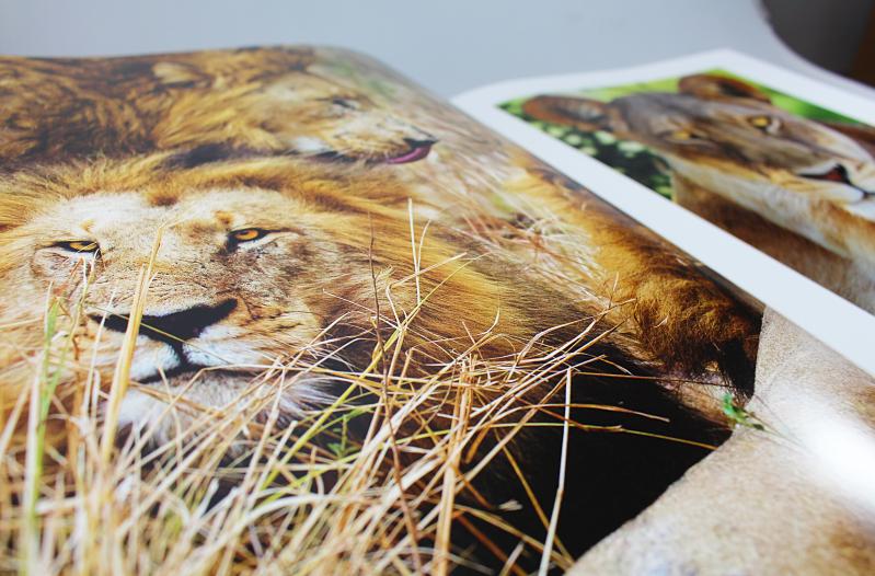 loewe - Eden - Die Fotografie von Art Wolfe