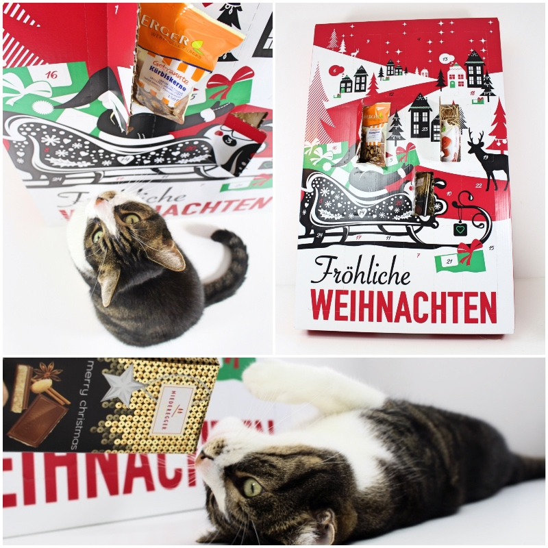 mix - XXL Adventskalender von brandnooz