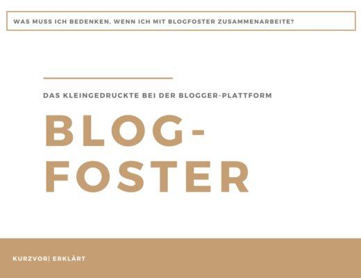 Blogfoster 520x400 - Das Kleingedruckte bei Blogfoster