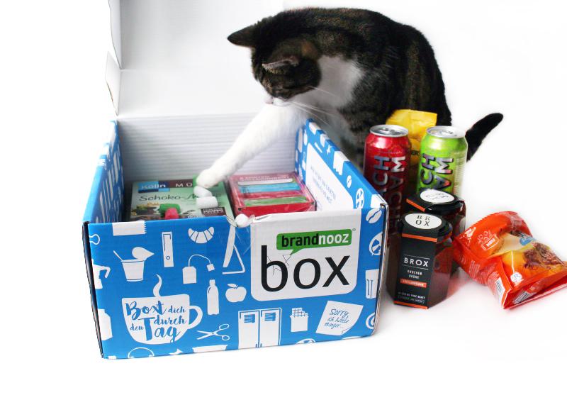 kater - Team Box - Die neue Box für die Kollegen