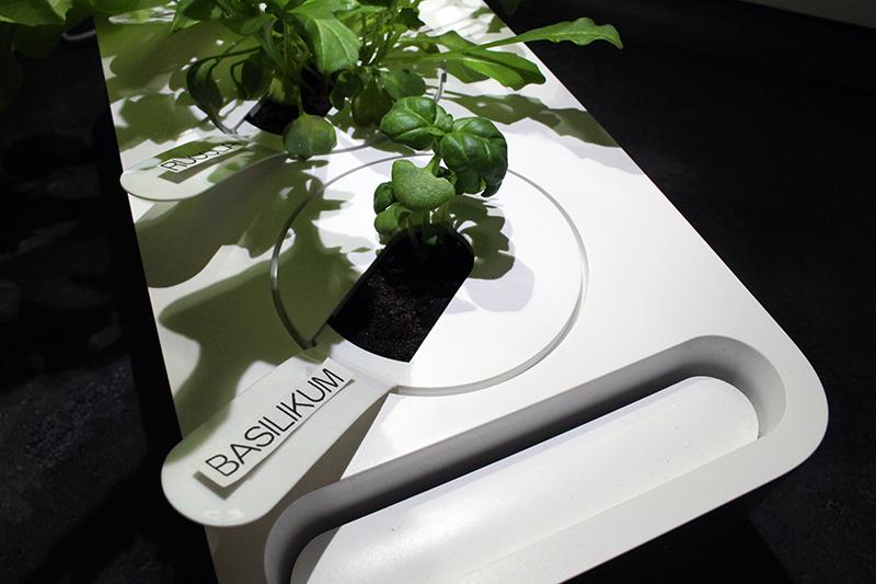 basilikum - Click & Grow Smart Garden von emsa