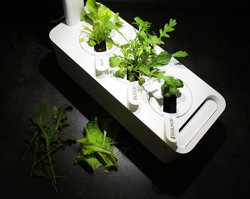 ernte - Click & Grow Smart Garden von emsa