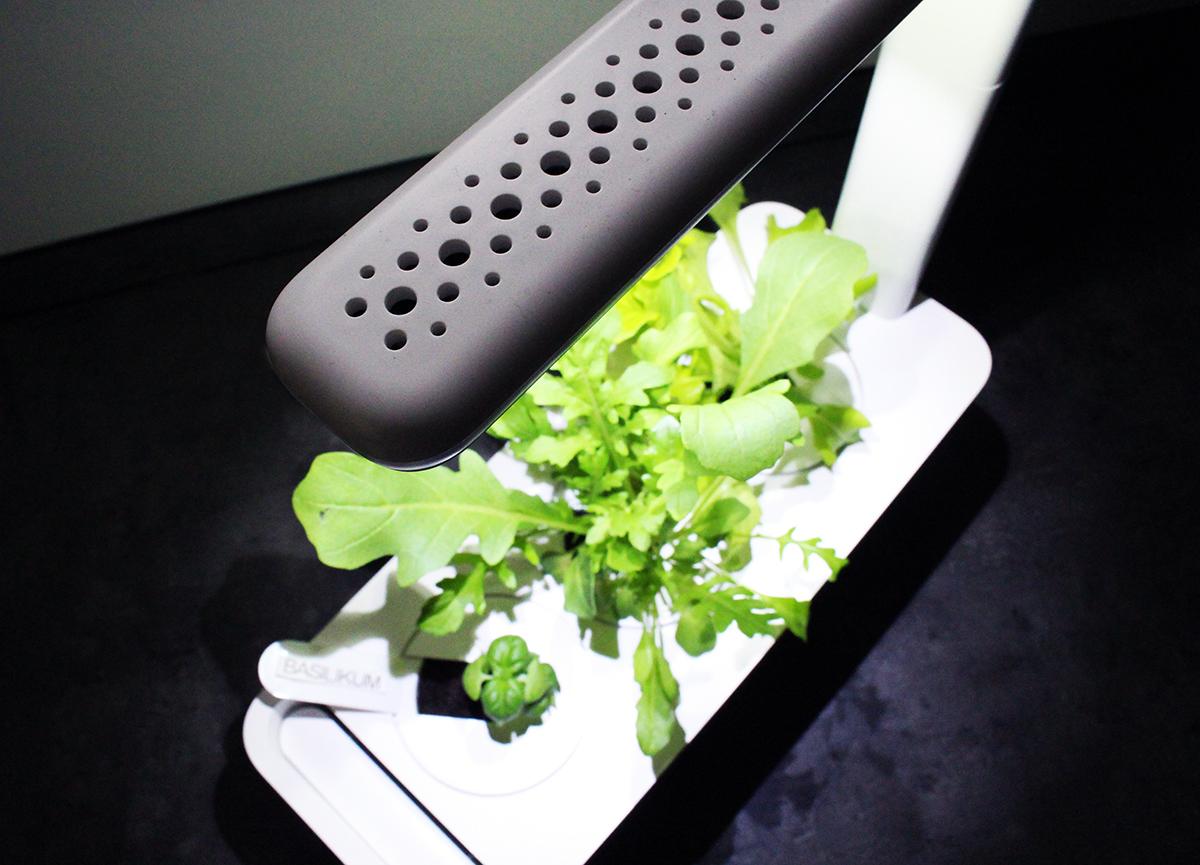 oben gr - Click & Grow Smart Garden von emsa